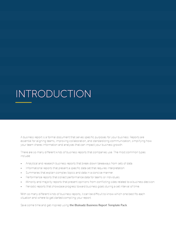 Business-Report-Template-Pack-previews_Page_02