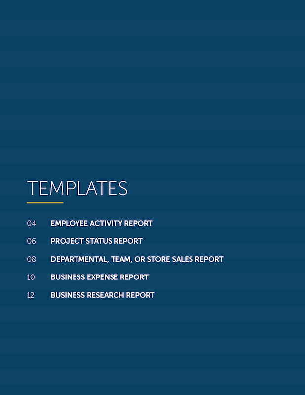 Business_Report_Template_Pack-preview-3