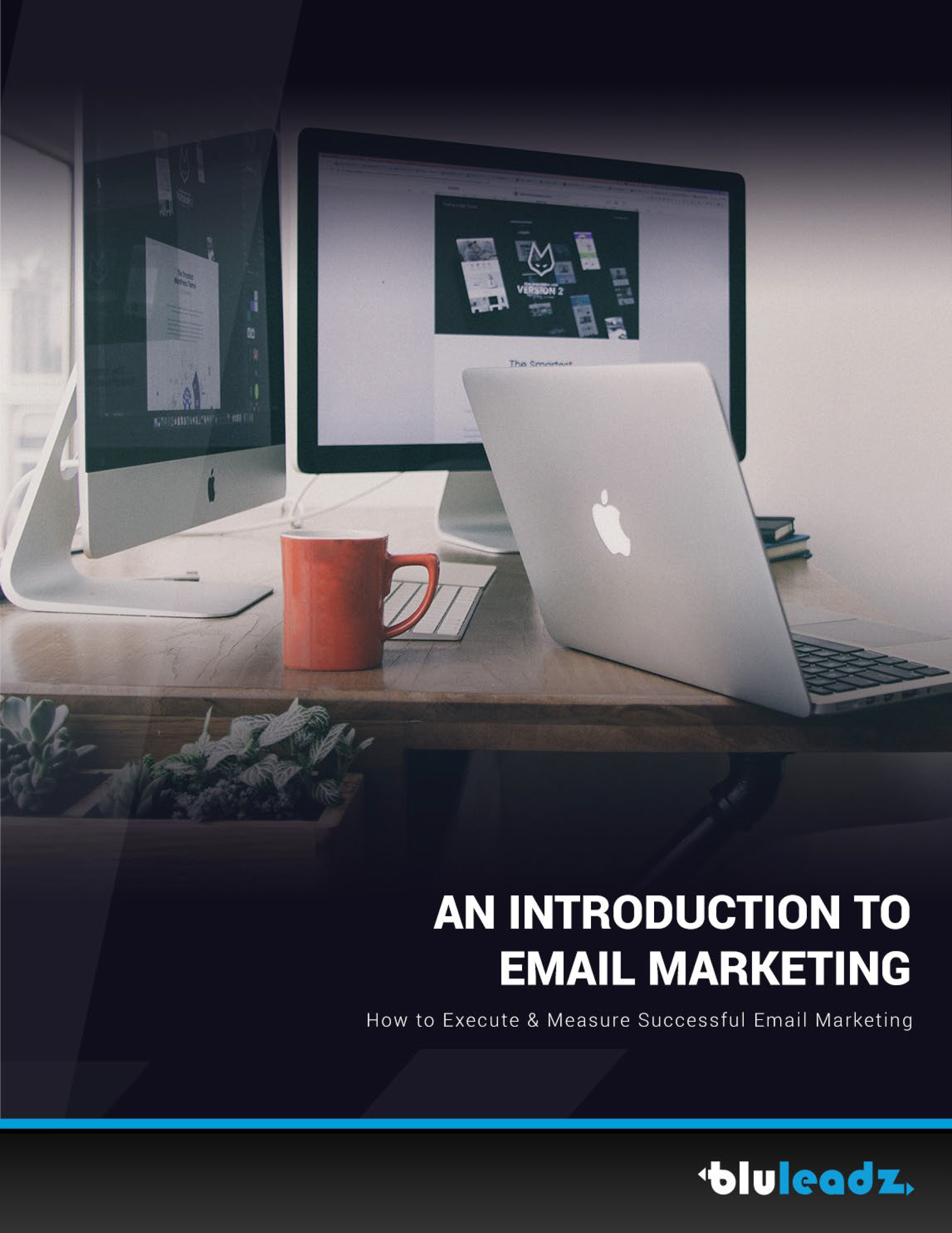 intro-email-marketing-preview-1